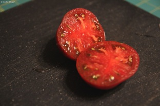 My Lone Cherokee Purple Tomato © Andor (1)