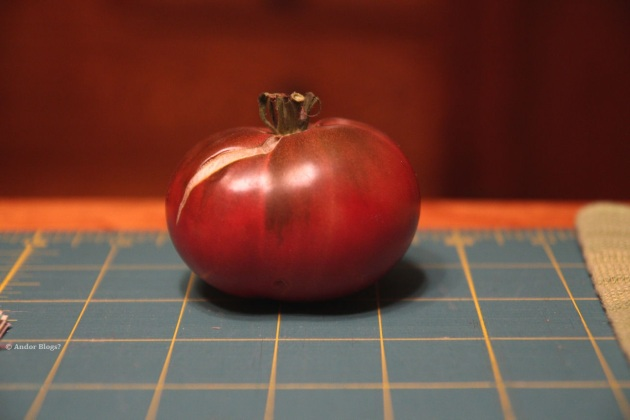 My Lone Cherokee Purple Tomato © Andor (3)