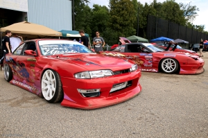 Final Bout – Animal Style © Andor(7)
