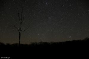 Night Sky © Andor(2)