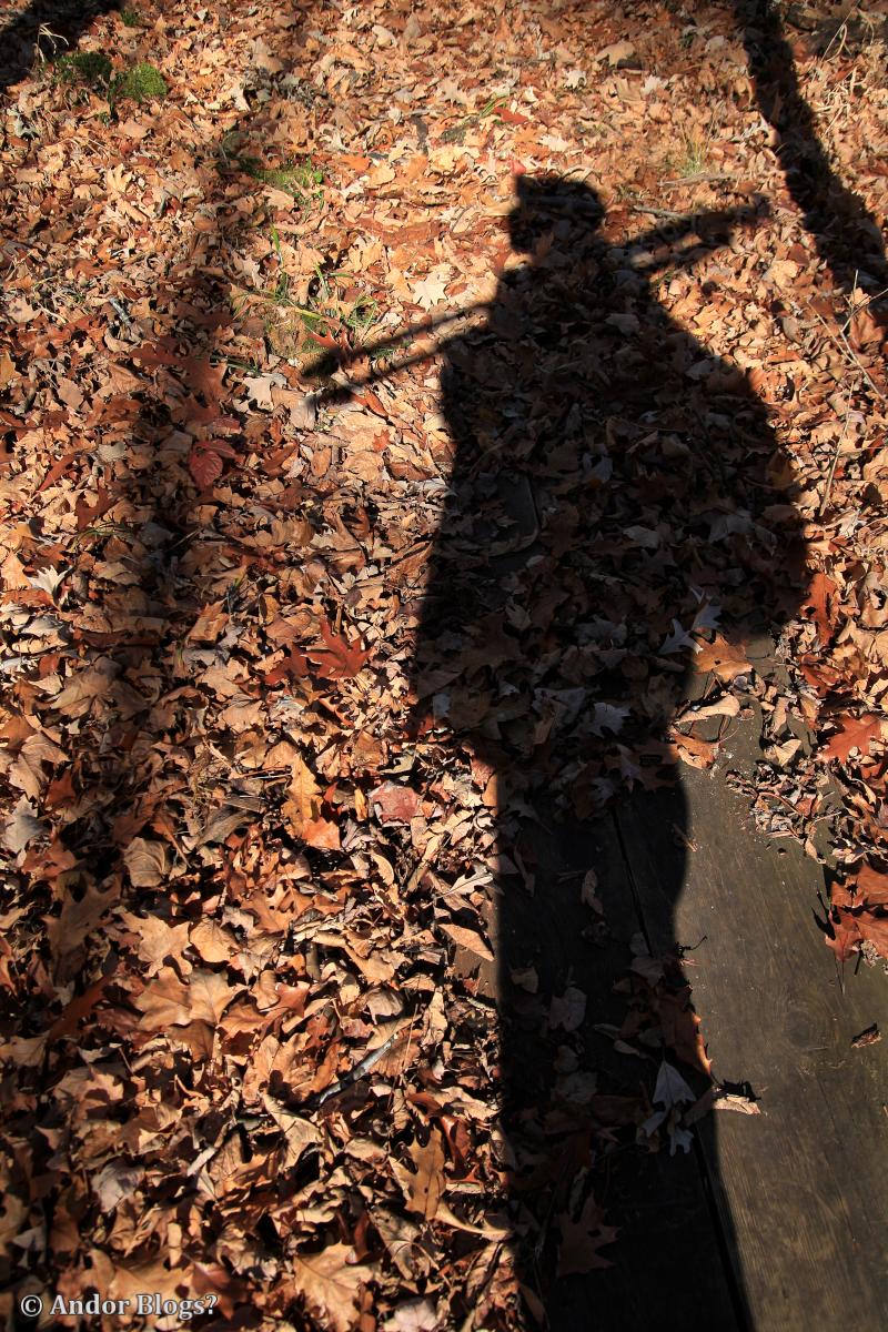 Selfie © Andor