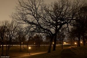 Como PArk at Night © Andor(1)