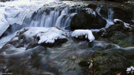 Willow River Falls © Andor (8)